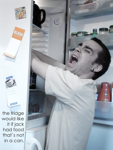 7.domestic war the fridge